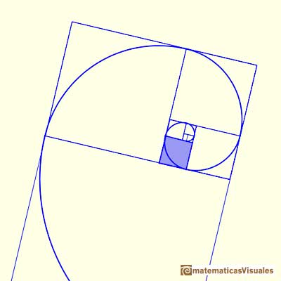 Rectángulo áureo, espiral de Durero y espiral equiangular dorada: golden spiral, Drawing up an arc of circumference in each square we get a golden spiral | matematicasVisuales