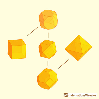 Truncated cube and octahedron: truncated cube, truncated octahedron and cuboctahedron | matematicasvisuales